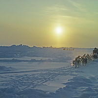 DOGSLEDDING, International Arctic Project. Team led by Will Steger (MR) threads between pressure ridges on frozen Arctic Ocean shortly after leaving Severnaya Zemlya, Russia, en route to Canada via the North Pole. Air temperature is -40 degrees.