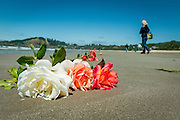 Boquets of roses are left as a memorial on the Oregon beach where workers labor to remove a cement floating boat dock that had drifted across the Pacific Ocean resulting from the 2011 Japanese tsunami.