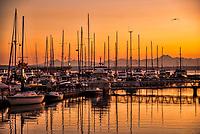 Elliott Bay Marina @ Sunset, Magnolia