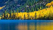 Fall color at Silver Lake along the June Lake Loop, Inyo National Forest, California USA