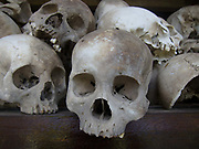 Skulls piled up and on display in the monument build to comemorate victims of the Khmer Rouge regime in the seventies in the Killing Fields, 15 miles outside Phnom Penh. The site was where prisoners were taken from Camp S21, a interrogation camp set up in a college in Phnom Penh to be killed. The victims were men, women and children, including babies. Millions perished unde the Khmer Rouge regime run by Pol Pot in the seventies.