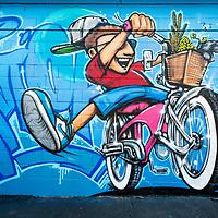Boise Mural Project 2020