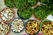 Buffalo mouth grass, straw mushrooms and wild dok kare flowers for sale at Hua Kua evening market on the outskirts of Vientiane, Lao PDR. A large variety of local products are available for sale in fresh markets all over Laos, all being sold on small individual stalls.
