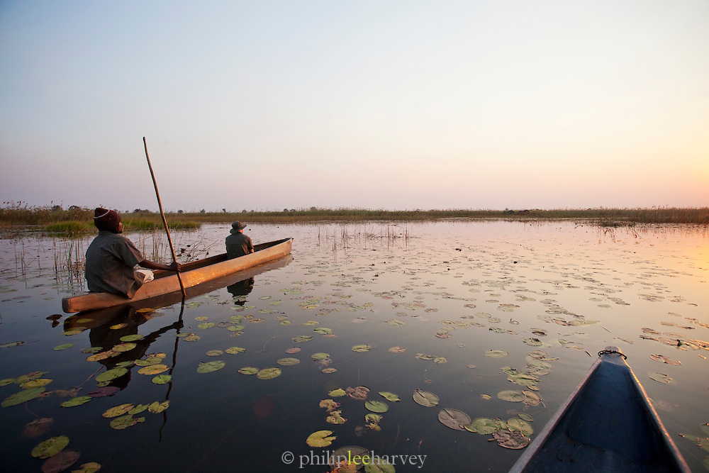 In the Okavango Delta people travel by makoro, a dug out wooden canoe, enabling them to get close to wildlife. Near Seronga, Botswana