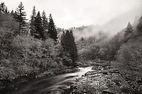 Nehalem River, Oregon.