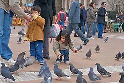 Kids and Pigeons, Plaza de Mayo
