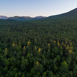 An aerial view of the forest in Jackson, New Hampshire. White Mountains. Mount Washington is in the distance.
