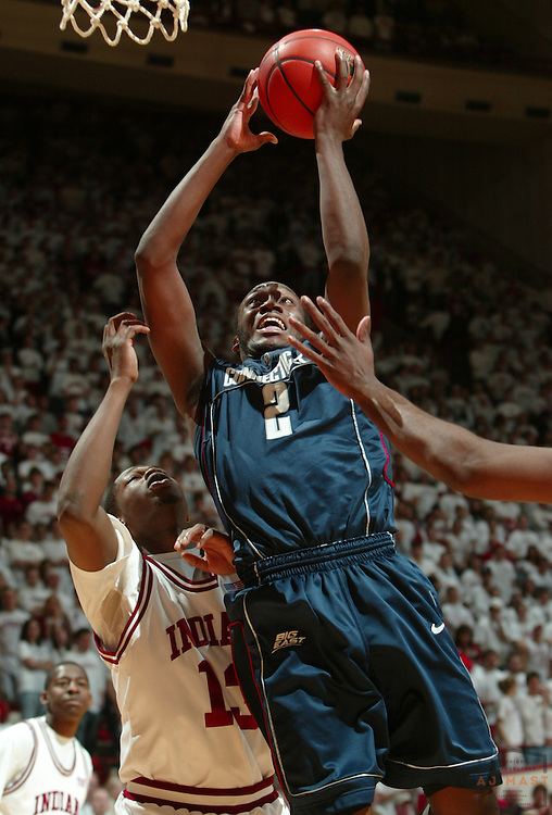 26 January 2008: Connecticut guard Donnell Beverly (2)  as the Indiana Hoosiers played the University of Connecticut Huskies in a college basketball game in Bloomington, Ind.
