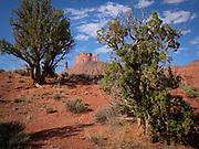 "Panoramic photo of the ""Professor Valley"", Moab, Utah"