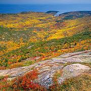 Autumn on Cadillac Mountain in Acadia National Park. Mount Desert Island, Maine