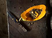 Papaya (called Pufi).