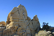 Doug D'Aluisio on top, belays for Adam making his first climb of a boulder at Joshua Tree National Monument, California Christmas road trip from Napa, California to Sedona, Arizona and back.
