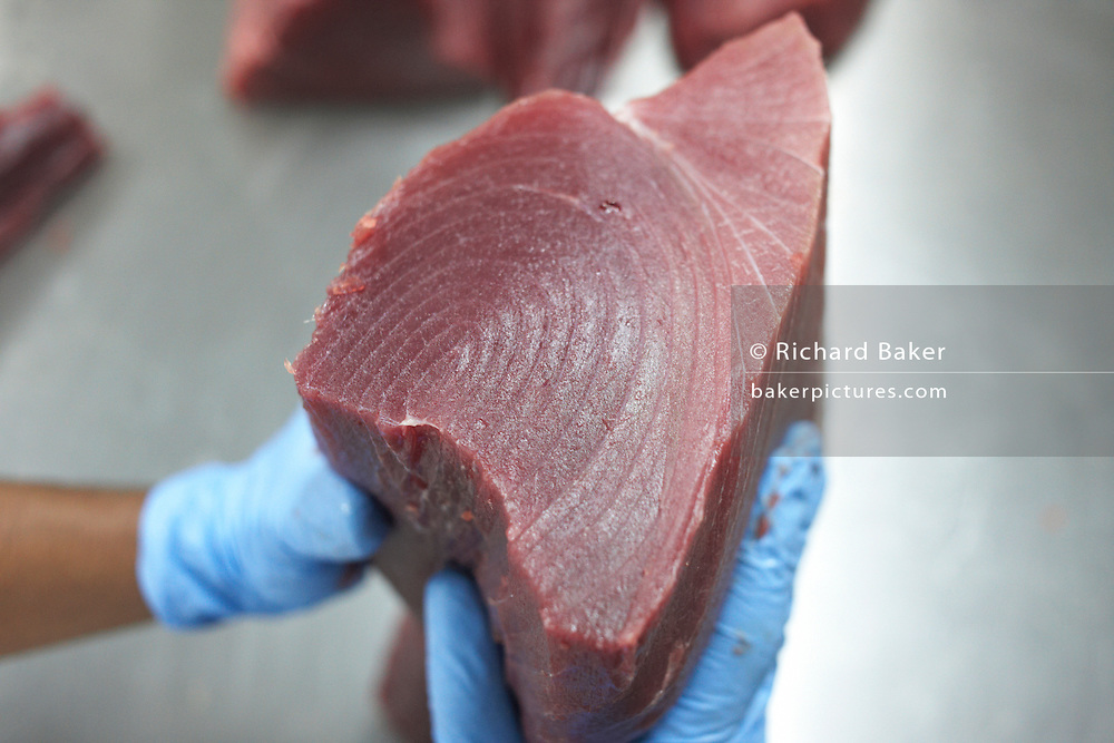 Processing uncut yellow fin tuna steak at Cyprea Marine Foods EU-standard factory at Himmafushi, Republic of Maldives.