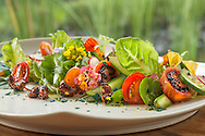 Raw, Salad, Superfood, Greens, Herbs, Avocado, Tamarillo, Spirulina, Cashews