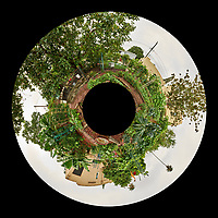 Backyard Urban Garden Little Planet Panorama in St Petersburg.  Composite of 73 images taken with a Fuji X-T1 camera and 16 mm f/1.4 lens (ISO 200, 16 mm, f/16, 1/15 sec). Raw images processed with Capture One Pro, and Autopano Giga Pro.