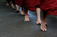 Burma/Myanmar, Amarapura. Monks going to the kitchen to get their midday meal.