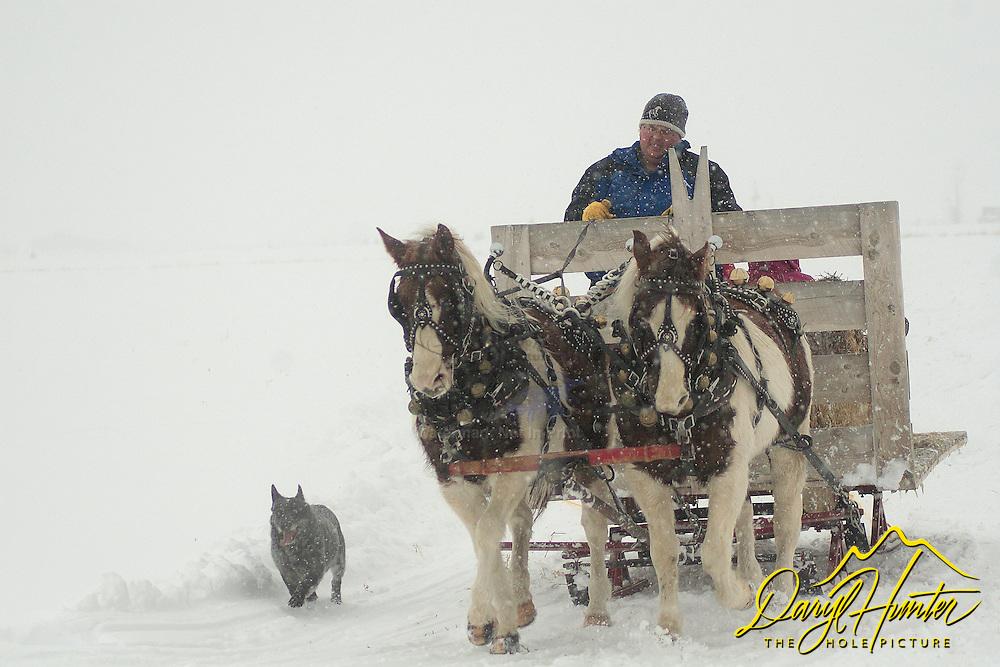Winter sleigh ride in Teton Valley Idaho
