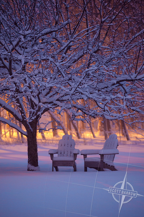 Two Adirondack chairs in winter storm under a tree at night.