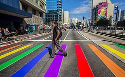 June 18, 2017 - Sao Paulo, Brazil - Revellers take part in the 21st SP LGBT pride parade at Paulista Avenue inSão Paulo, Brazil, on Juner 18, 2017. (Credit Image: © Cris Faga/NurPhoto via ZUMA Press)