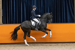 Koolen Kim, NED, For Ferrero<br /> Fotodag KWPN Hengstenkeuring 2021<br /> © Hippo Foto - Dirk Caremans<br /> 09/01/2021