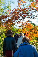 Old Westbury, New York, U.S. October 19, 2019. At left, ROXANNE BINASO, of New Hyde Park, and other guests also seen from behind are on an art tour on the colorful autumn grounds of Old Westbury Gardens on the Gold Coast of Long Island, during Closing Reception for Jerzy Kędziora (Jotka) Balance in Nature outdoor sculptures exhibit.