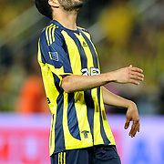 Fenerbahce's Daniel Gonzalez GUIZA during their Turkish superleague soccer derby match Fenerbahce between Trabzonspor at the Sukru Saracaoglu stadium in Istanbul Turkey on Sunday 16 May 2010. Photo by TURKPIX