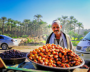 Street vendor selling freshly harvested dates by the roadside in Dahshur