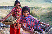 Bihar India March 2011. Young girls collecting animal droppings to use as fuel.