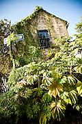 Historic home along the Battery in Charleston, SC overwhelmed by vegetation.