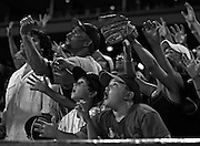 Fans try to catch a baseball behind the Chicago White Sox dugout during a game against the Kansas City Royals at U.S. Cellular Field on Friday, July 9, 2010.<br /> <br /> (Brian Cassella/ Chicago Tribune) B58518413Z.1<br /> ....OUTSIDE TRIBUNE CO.- NO MAGS,  NO SALES, NO INTERNET, NO TV, NEW YORK TIMES OUT, CHICAGO OUT, NO DIGITAL MANIPULATION...