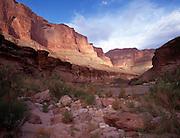 Blacktail Creek, Colorado River mile 120, Grand Canyon National Park, Arizona, USA; 6 May 2008; Pentax 67II, 55mm lens, polarizer, Velvia 100