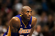 Kobe Bryant (24) of the Los Angeles Lakers looks on during a free-throw against the Dallas Mavericks at the American Airlines Center in Dallas on Sunday, February 24, 2013. (Cooper Neill/The Dallas Morning News)