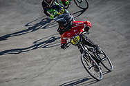 8 Boys #60 (LUCA Taj) DEN at the 2018 UCI BMX World Championships in Baku, Azerbaijan.