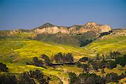 Placerita Canyon State Park And Historic Landmark