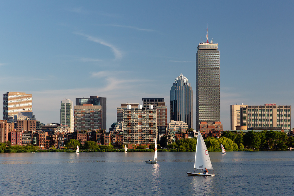 Sailboats cruising the warm waters of the Charles River on a summertime afternoon.
