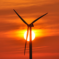 Even with our windy days here on the Texas coast, at sunset we are surrounded by a peaceful beauty. The wind farms in the area offer a some detail to an otherwise flat landscape. In this photograph, the turbines were barely moving against the slightest breeze as the sun gently descended behind them.