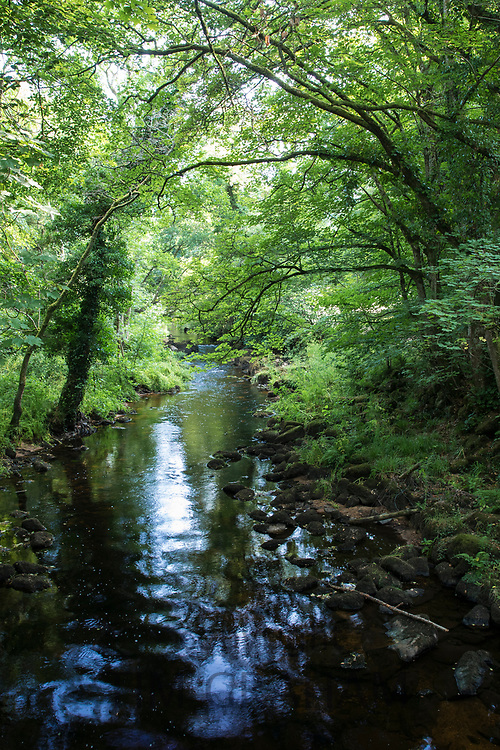River Teign near Chagford on Dartmoor in Devon, UK