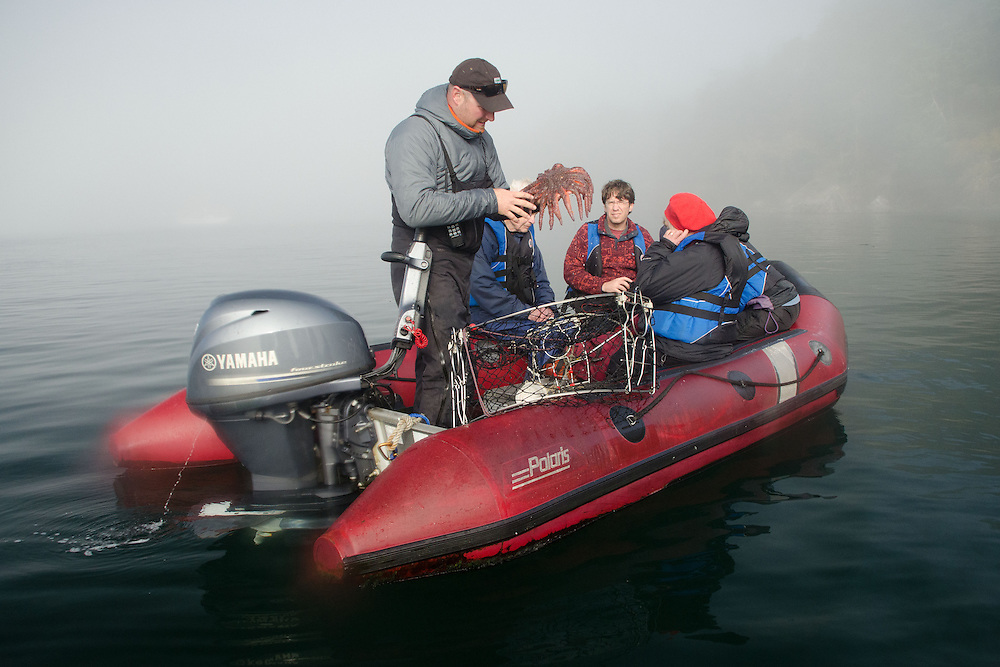 Picking up Crab Traps in the Tender, Gulf Islands, British Columbia, Canada
