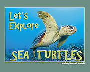 The oceans' ultimate survivors, sea turtles have changed little since the time of <br /> dinosaurs.  From the pelagic leatherback to the reef-dwelling hawksbill, these <br /> ancient mariners are perfectly designed to survive in the high seas.<br /> <br /> Let's Explore Sea Turtles shows young explorers how remarkable these clever <br /> creatures are and highlights the most popular species.  Children learn about <br /> conservation efforts in place, and how they can make a difference protecting these<br /> adorable reptiles.<br /> <br /> Brilliantly photographed, the book is sprinkled with revealing and informative text and <br /> will inspire kids to safeguard our precious oceans.<br /> <br /> ISBN 978-0-9728653-2-6 <br /> 8.5 x 11 inches (landscape)<br /> Hardcover with dust jacket; 32 pages<br /> Ages 4-10