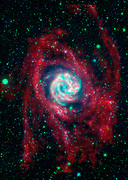 The outlying regions around the Southern Pinwheel galaxy, or M83, are highlighted in this composite image from NASA's Galaxy Evolution Explorer
