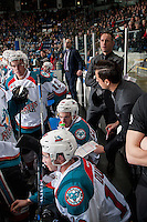KELOWNA, CANADA - FEBRUARY 1: Travis Crickard, assistant coach of the Kelowna Rockets stands on the bench and goes over a play against the Calgary Hitmen on February 1, 2017 at Prospera Place in Kelowna, British Columbia, Canada.  (Photo by Marissa Baecker/Shoot the Breeze)  *** Local Caption ***