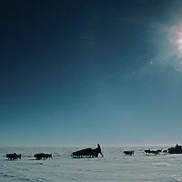 Dog teams from the 1989-1990 Trans-Antarctica Expedition cross the vast polar plateau, near the South Pole.