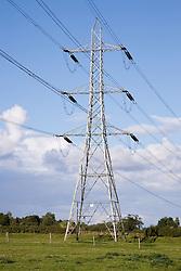 Electricity pylon in a field,