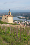 The la chapelle chapel vineyard tain l hermitage rhone france