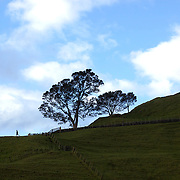 Walkers at One Tree Hill, an historic landmark in Auckland, New Zealand, 11th November 2010. Photo Tim Clayton