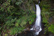 Waterfall along the Walami trail, in the Cloud forest, Yushan National Park, Taiwan