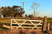 Sunlight On Fence, Pecan Island, LA (11/06)