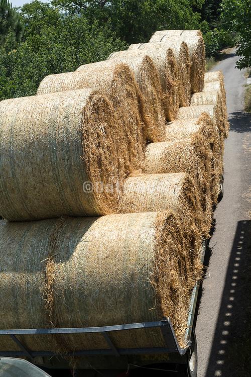 fresh round straw bales being trandsported  France