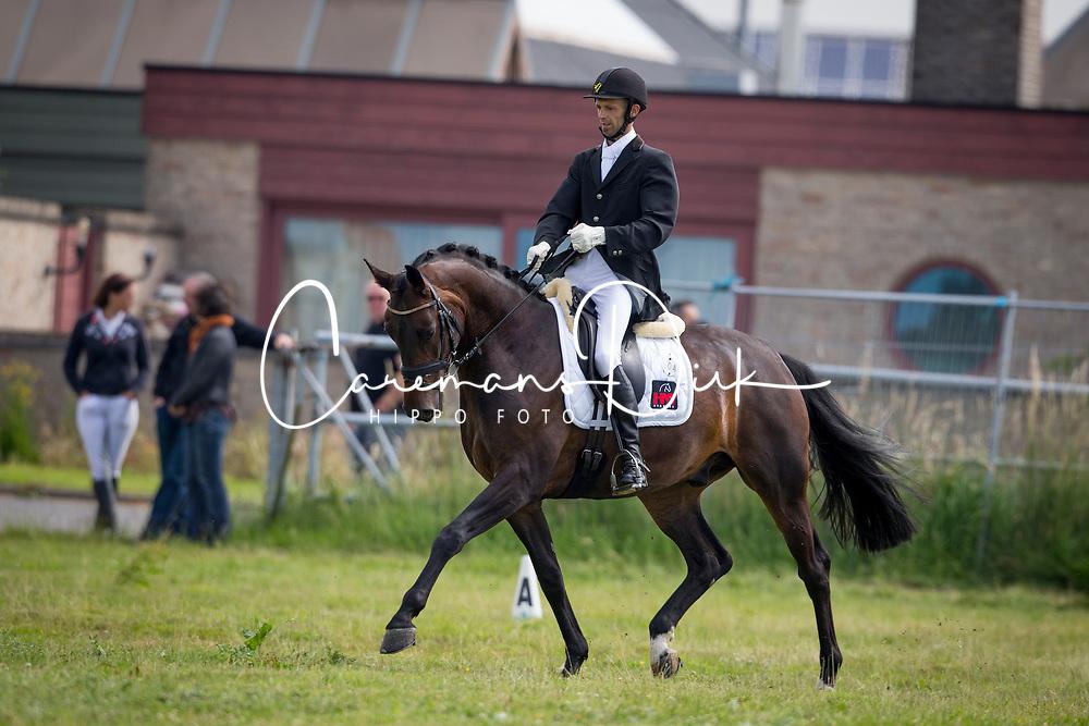 Hoefman Peter, (BEL), Lord DOnovan vd Netevallei<br /> Nationale finale SBB competitie voor jonge paarden <br /> 5 jarigen dressuurpaarden LRV - Moorsele 2016<br /> © Hippo Foto - Dirk Caremans<br /> 26/06/16