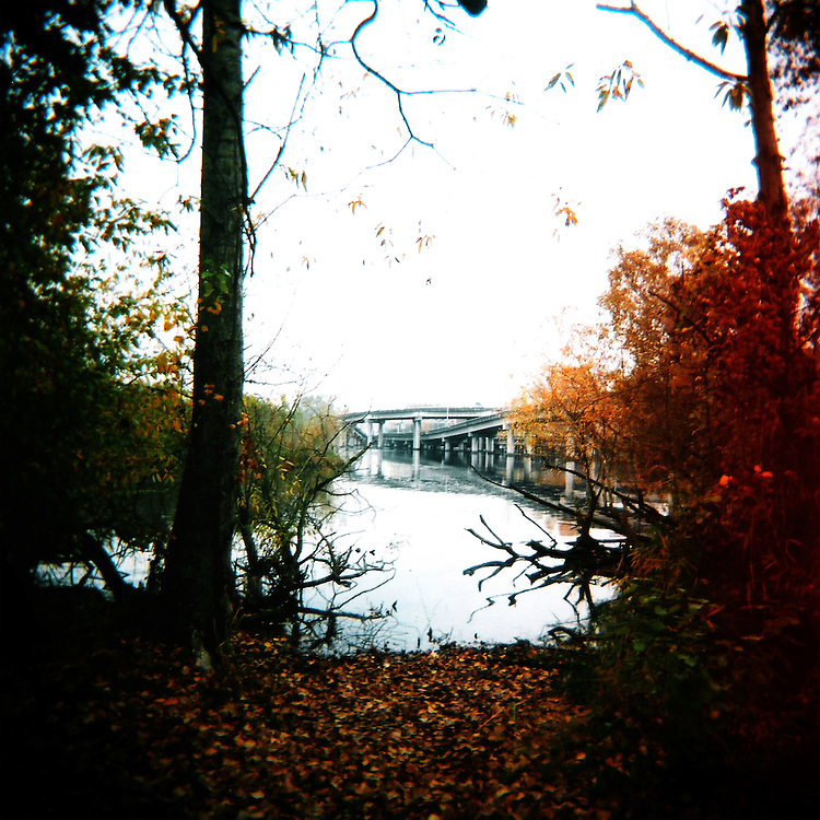 Lake Washington Arboretum Waterfront Trail No.3